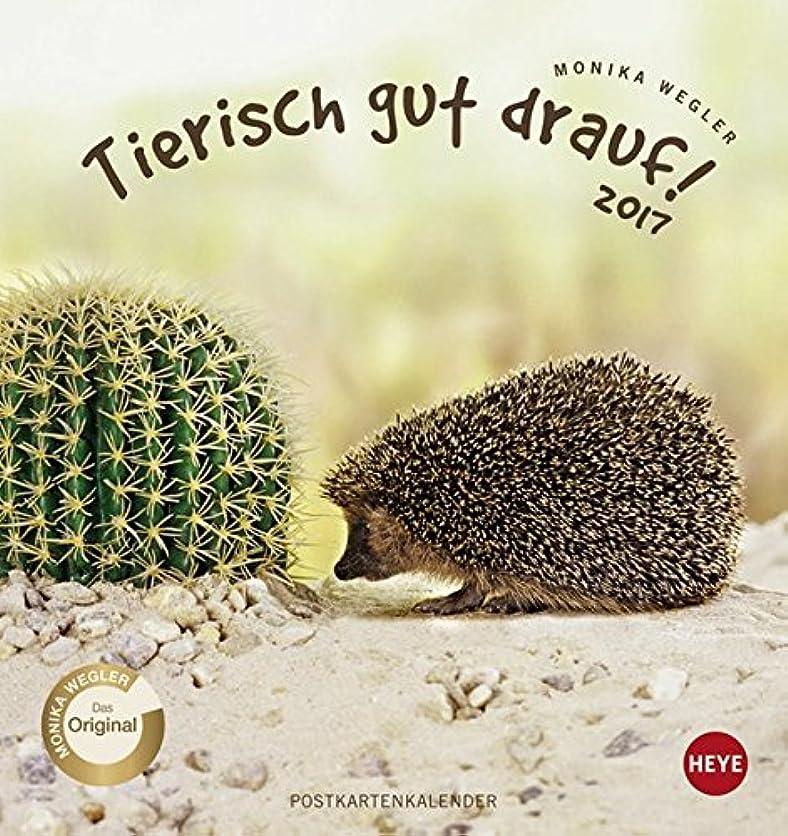ファイアル想像力豊かな性的Tierisch gut drauf  2017 Postkartenkalender