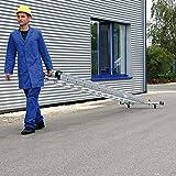 Aluminium-Schiebeleiter con ´Roll-Bar´ - Traverse 2x24 Plantas de Semillero - 20524