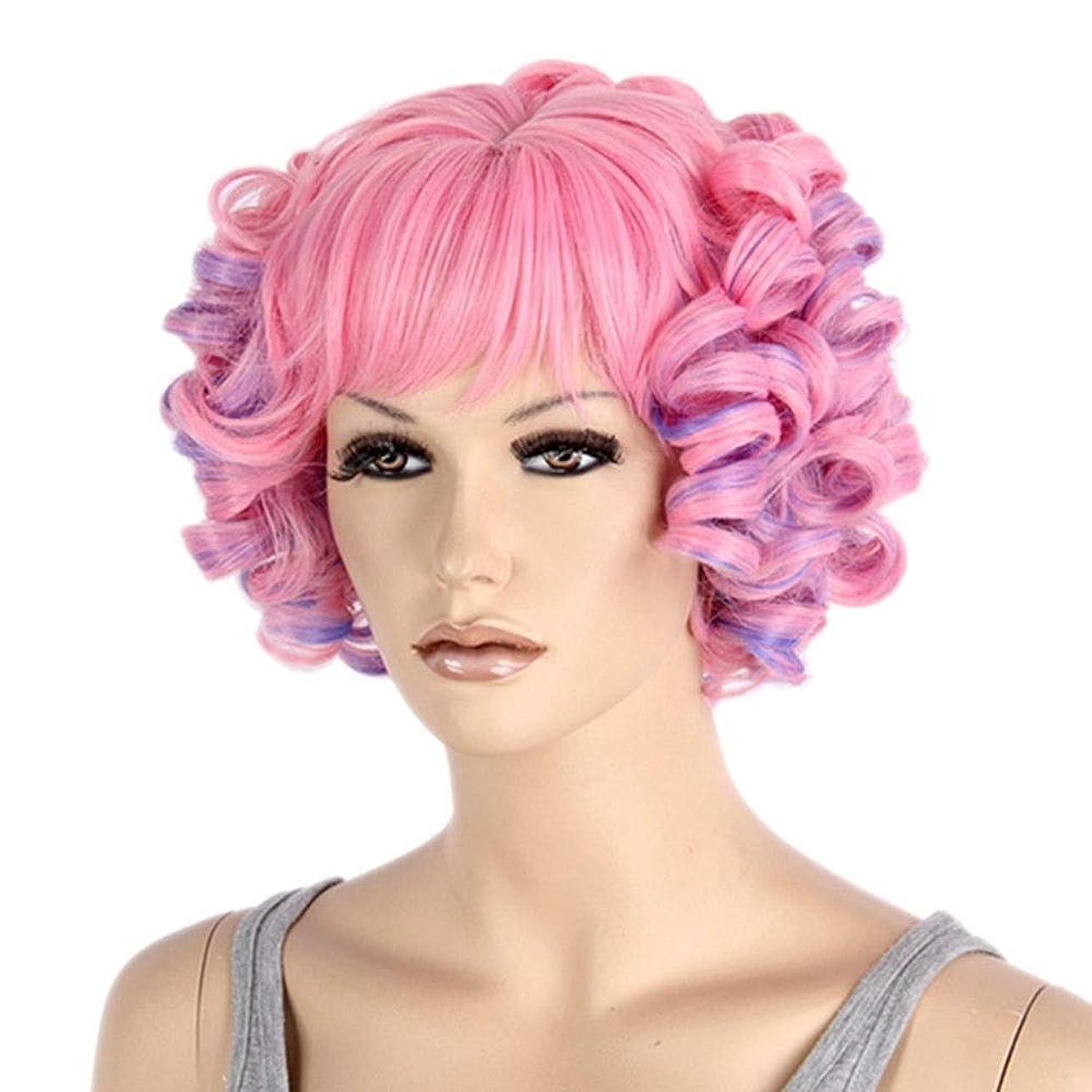 許容葉っぱめったにMayalina 女性のためのショートカーリーマルチカラーウィッグピンクとパープルのコスプレ合成かつら(ピンクミックスパープル)女性用合成かつらレースかつらロールプレイングかつら (色 : Photo Color)