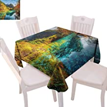Zara Henry Landscape Tablecloths Five Flower Lake China Home Outdoor Rectangular Tablecloth W54 xL54