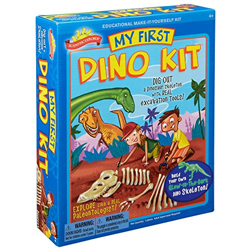 Dinosaur Skeleton Bone and Fossil Toys
