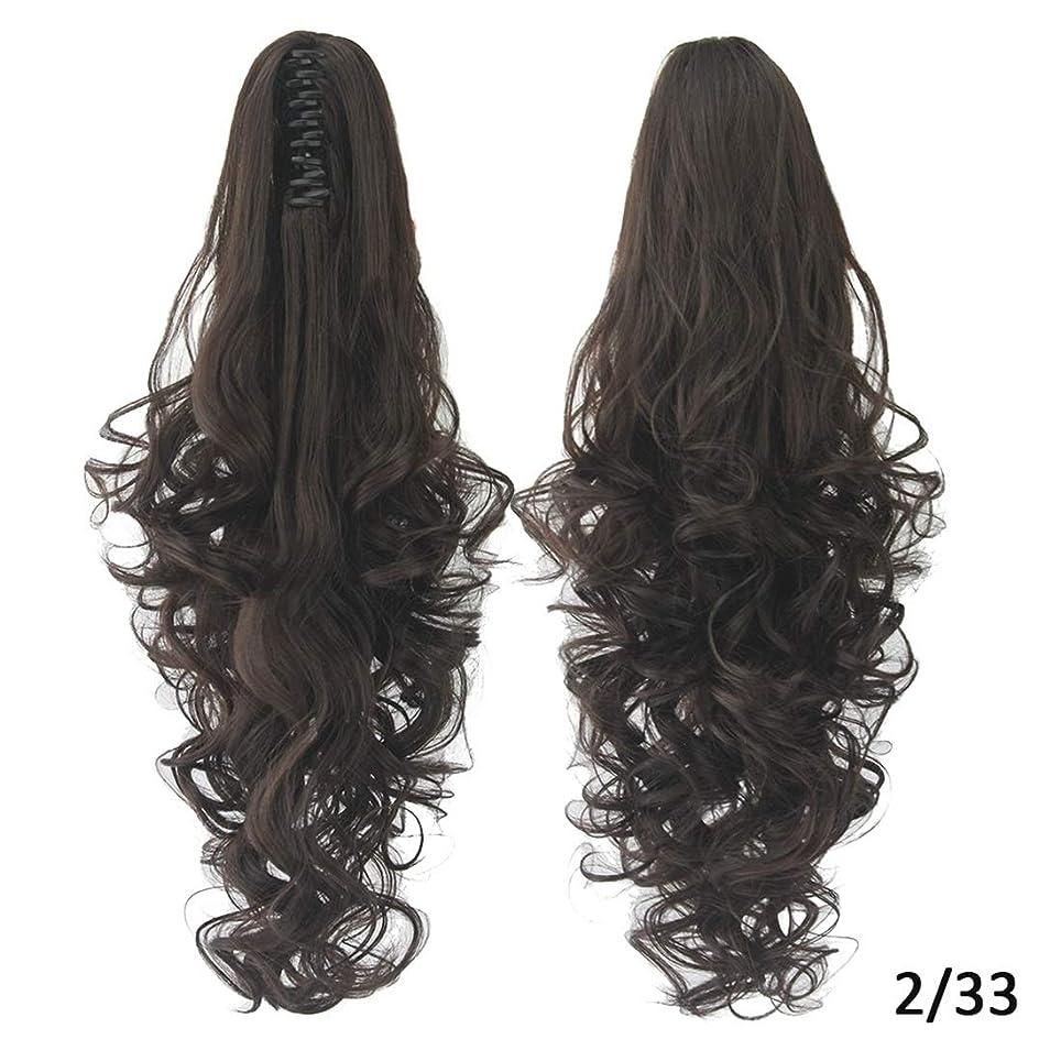 先史時代の提出する事業Koloeplf 女性のためのヨーロッパとアメリカのかつらの髪のエクステンション15色オプションの長いカーリーヘアポニーテールクリップ (Color : Color 2/33)