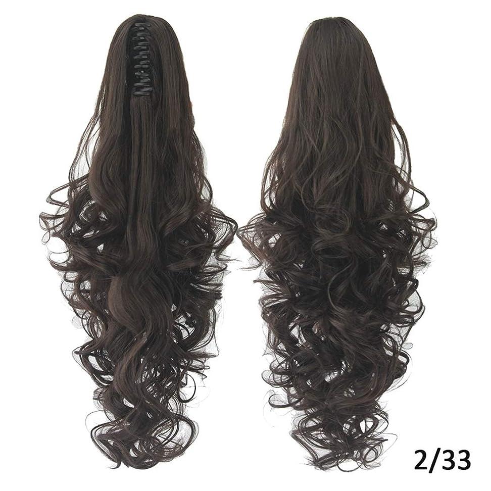 重要性撤回するつぼみKoloeplf 女性のためのヨーロッパとアメリカのかつらの髪のエクステンション15色オプションの長いカーリーヘアポニーテールクリップ (Color : Color 2/33)