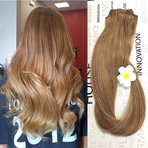 She beauty-18 inch Balayage Ombre Clip in Hair Extensions Human Hair with Dirty Blonde Highlights