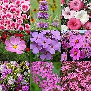 pink bluebonnet seeds