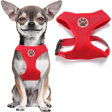 XS, Azul FEimaX Arn/és para Perro Peque/ño Gato Chaleco Reflectante y Ajustable Sin Tirones Arnes con Correa de Malla Suave Arn/és C/ómodo para Cachorros Perros Peque/ños Gatos y Mascotas
