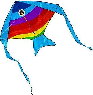 Hengda Kite Rainbow Fish Kite for Girls Boys Let Fish Swim in Sky Kite with 30m Line