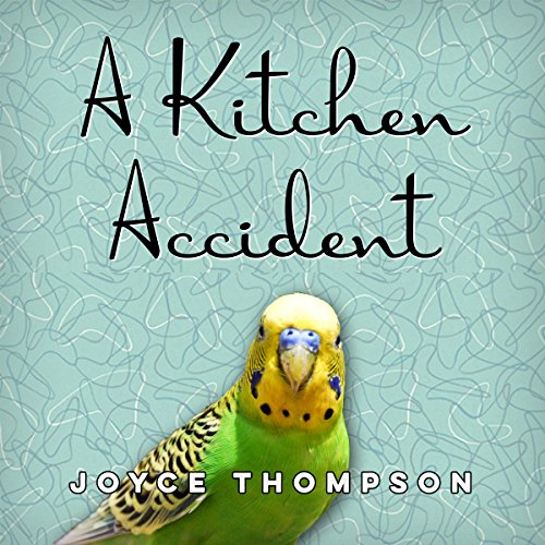A Kitchen Accident audiobook cover art