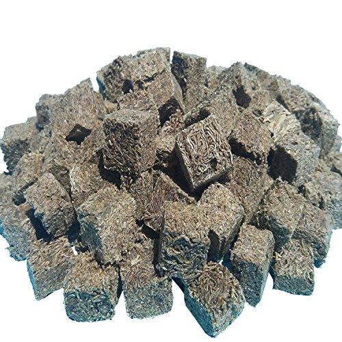Freeze Dried Blackworms