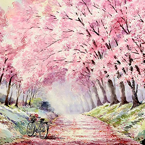 Diymood Painting Acrylic Paint by Number Kits for Students Beginner, DIY Cherry Blossom Bike Tree-Lined Road Oil Painting Drawing Wall Home Decor 20x20inch 02262