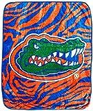 College Covers Florida Gators Raschel Throw Blanket, 50' x 60'