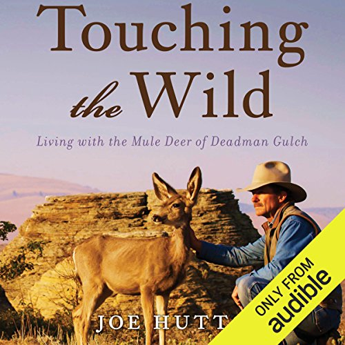 Touching the Wild audiobook cover art