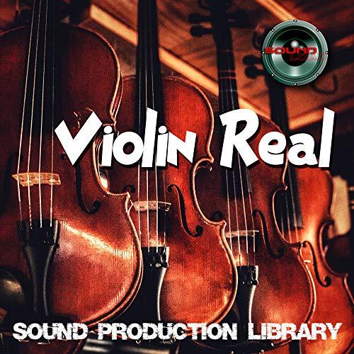Violine Real – Große Original 24 Bit Wave / Kontakt Proben / Loops Bibliothek