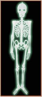 Best 4 ft plastic skeleton Reviews