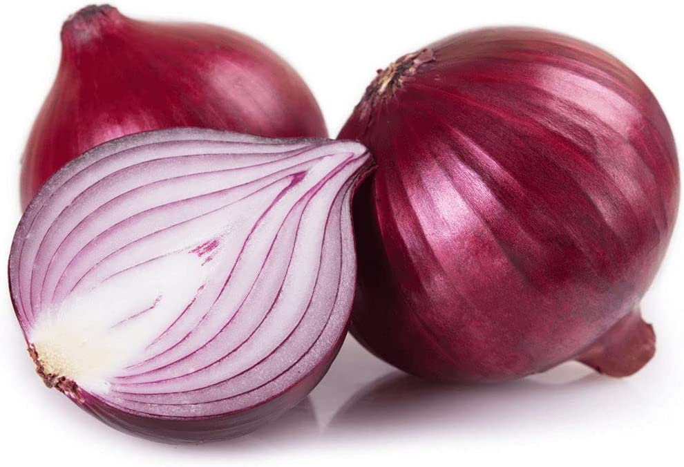 Red Onion Seeds 500pcs Non-GMO Indoor or Popular Planting for Your Attention brand