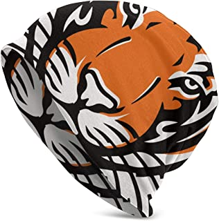 princeton football helmet
