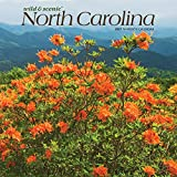 North Carolina Wild & Scenic 2021 12 x 12 Inch Monthly Square Wall Calendar, USA United States of America Southeast State Nature