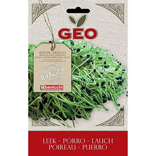 Geo Porro Semi da Germoglio, Marrone, 12.7x0.7x20 cm