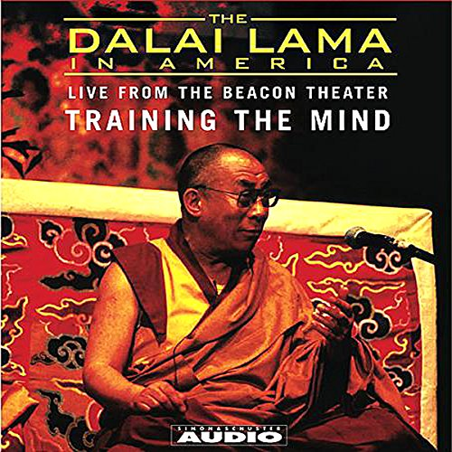 The Dalai Lama in America audiobook cover art