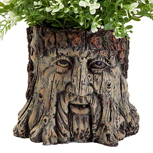 Bits and Pieces - Tree Face Garden Planter - Durable Polynesian Indoor-Outdoor Urn for Plants - Forest Inspired Whimsical Garden Décor