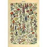 Meishe Art Jahrgang Plakate Drucken Plakatdruck Blume