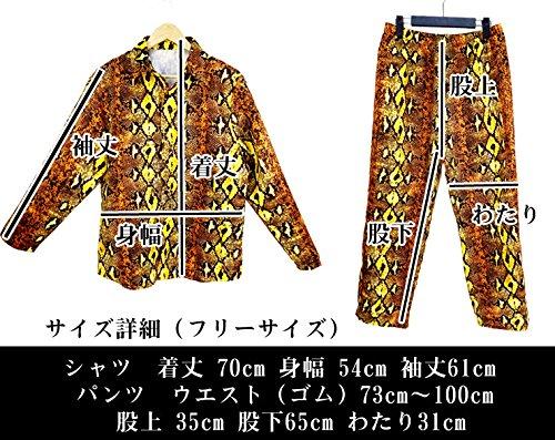 『[即納]ピコ太郎 なりきり上下セット 3点セットヒョウ柄 ヘビ柄 シャツ パンツ ストール』のトップ画像