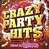 CRAZY PARTY HITS Mixed by DJ RAN