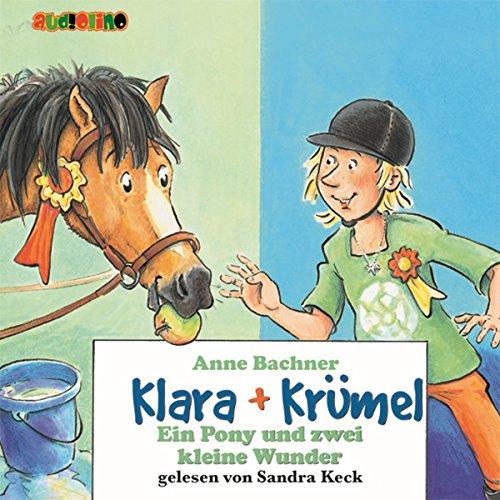 Ein Pony und zwei kleine Wunder Titelbild