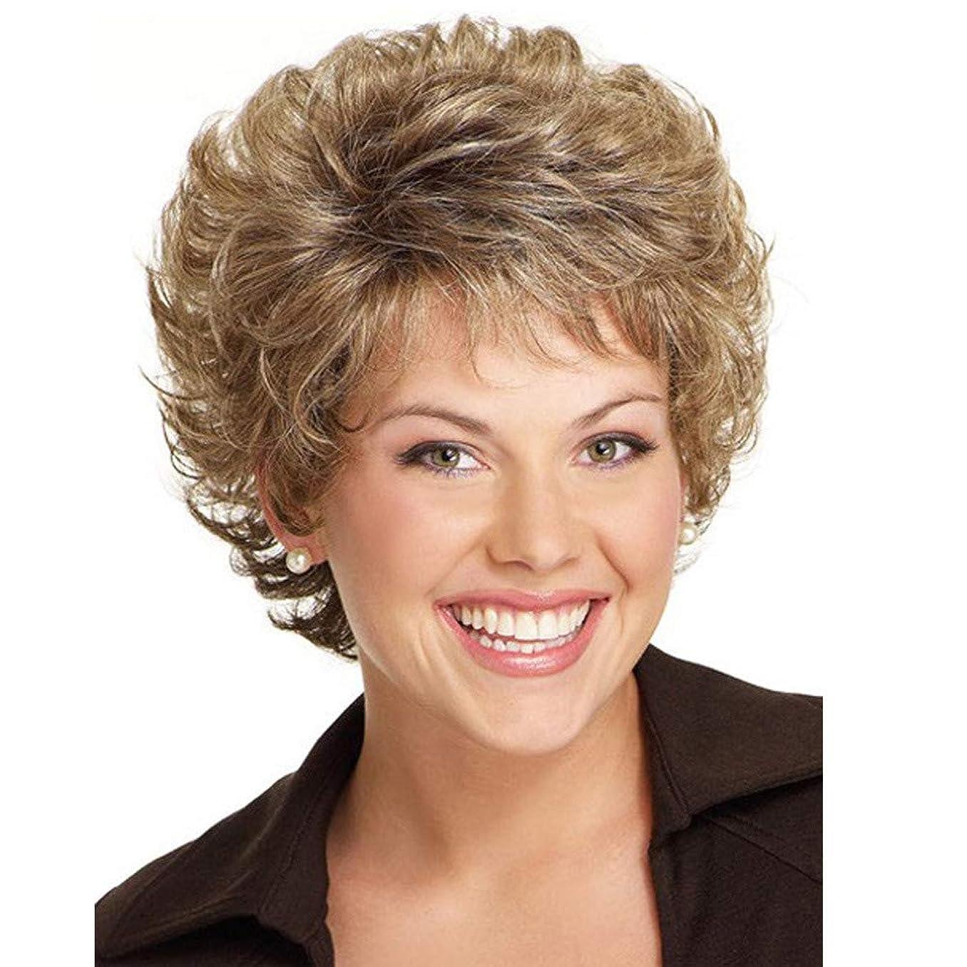 運命的な近代化絡み合い女性かつら180%高密度耐熱短髪混色カール人工毛フル毛髪かつらブラウン22 cm