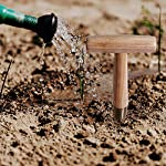 ZOENHOU 2 PCS 11 x 4.5 Inch Stainless Steel Dibbler with Long Wooden Handle, Seed Dibbler for Planting Seed… 12 EASILY MAKE HOLES - This seed dibbler tool can not only be used to make holes in the soil to sow seeds but also can be used to make holes around plants for fertilization METAL DRILL BIT - The drill bit of this dibbler garden tool is made of the carefully selected 430 stainless steel, which is corrosion-resistant, wear-resistant, sturdy and durable WOODEN HANDLE - The T-shaped handle is specially made of premium Toon, which is harder than ordinary wood. With a bright texture, this garden dibbler shows your elegance