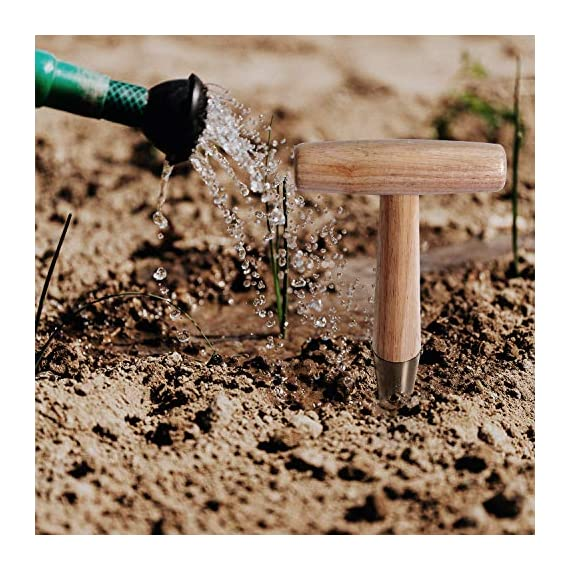 ZOENHOU 2 PCS 11 x 4.5 Inch Stainless Steel Dibbler with Long Wooden Handle, Seed Dibbler for Planting Seed… 6 EASILY MAKE HOLES - This seed dibbler tool can not only be used to make holes in the soil to sow seeds but also can be used to make holes around plants for fertilization METAL DRILL BIT - The drill bit of this dibbler garden tool is made of the carefully selected 430 stainless steel, which is corrosion-resistant, wear-resistant, sturdy and durable WOODEN HANDLE - The T-shaped handle is specially made of premium Toon, which is harder than ordinary wood. With a bright texture, this garden dibbler shows your elegance