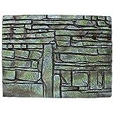 ICA FR1032 Fondo con Textura de Adoquines Repti-Selva