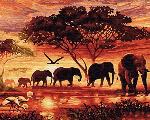 YXQSED [sin Marco DIY Pintura por Números Pint por Número de Kits for Adultos Mayores Avanzada Niños Joven-Elefante Africano 16x20 Inch