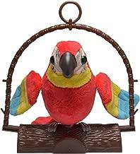 repeat pete parrot