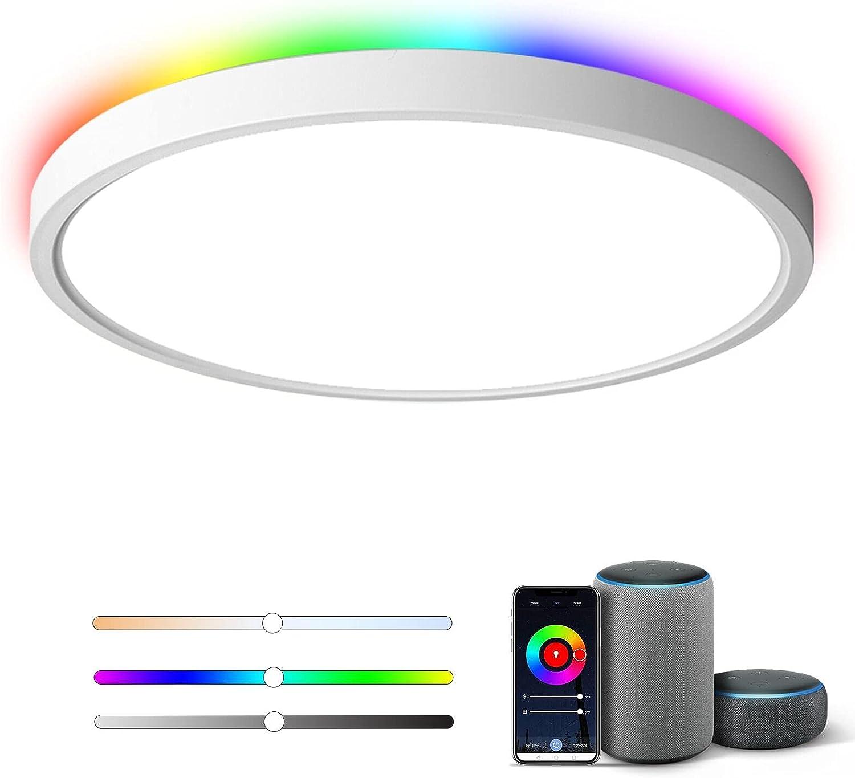 Flush Max 55% OFF Mount Smart Soldering LED Ceiling Light WiFi 2.4G 3000~6 20W 12inch
