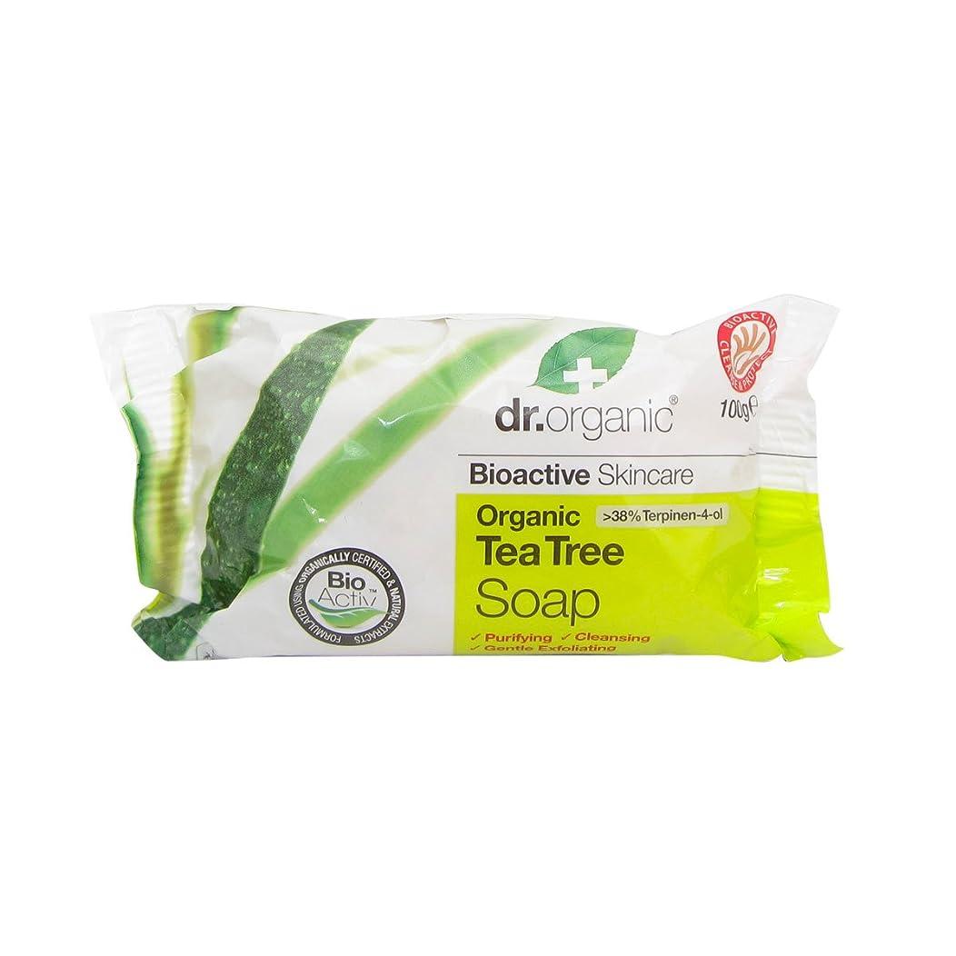 ブリリアントポーチメッシュDr.organic Tea Tree Soap 100gr [並行輸入品]