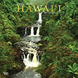 Hawaii Wild & Scenic 2022 12 x 12 Inch Monthly Square Wall Calendar with Foil Stamped Cover, USA United States of America Noncontiguous State Nature