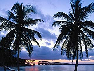 Old Bahia Honda Bridge Florida Keys -Oil Painting On Canvas Modern Wall Art Pictures For Home Decoration Wooden Framed (12X16 Inch, Framed)