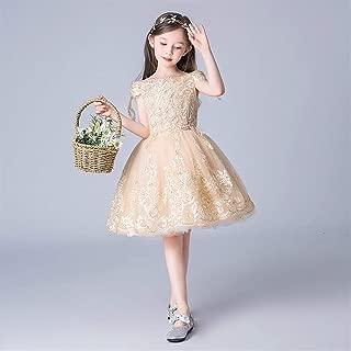 Luxury Princess Dress Children Dress Costumes Flower Girl Birthday Girl Pompon Yarn Dress Western Style Costumes ryq (Color : Champagne a, Size : 100cm)