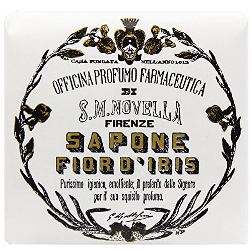 医療過誤文献思いやり【サンタマリアノヴェッラ】 フィオールディリス ソープ 100g (5591) Fior d'Iris [並行輸入品]