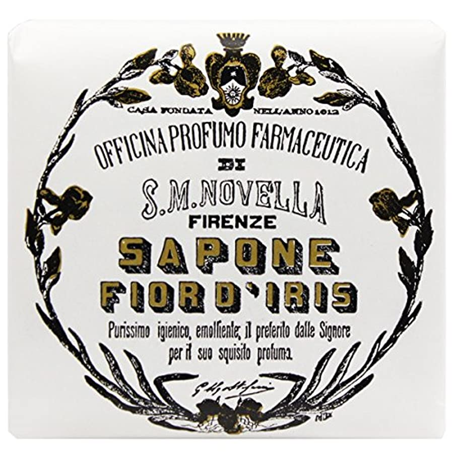 屈辱する社交的挑発する【サンタマリアノヴェッラ】 フィオールディリス ソープ 100g (5591) Fior d'Iris [並行輸入品]