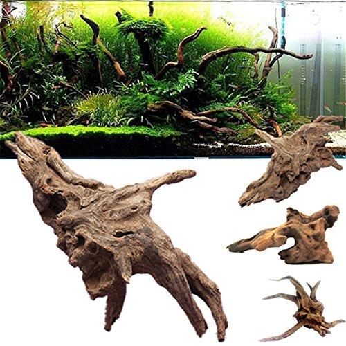 F.lashes Raíz de manglar para acuarios y terrarios, raíz natural, raíz de madera, pez, decoración de tanque