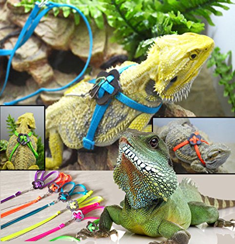 Sawyd Adjustable Reptile Lizard Harness Leash,Turtle Lizard Pet Traction Belt Bearded Dragon Accessories Soft Small Pet Animal Harness Rope -1.2M (Pink)
