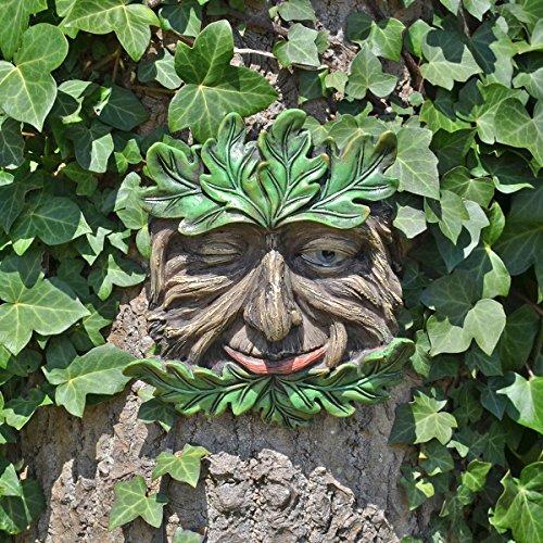 Fiesta Studios Tree Ent Face Wandschild, Tangleroot, groß, dekoratives Geschenk 16 cm