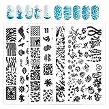 NICENEEDED Ocean Series Theme Nail Art Stamping Kit con 6 piezas de Placas de Estampado de Uñas para Mujeres Juego de Herramientas de Decoración de Uñas Ocean Design Nail Image Polish Template