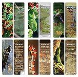 Creanoso Exotique Reptile bookmarker Cartes Bookworms (60-Pack) - Six qualité assortis Bookmarker Cards Set en vrac - cadeau haut de gamme pour hommes et femmes, garçons, filles, adolescents, adultes