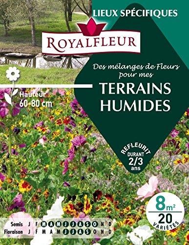 Royalfleur PFRE08819 Graines de des Mélange de Fleurs mes Terrains Humides 8 m²