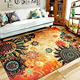 6 Best FADFAY Area Rugs