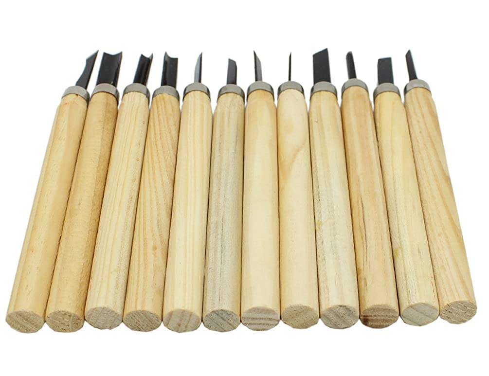 Unobite 12 Sets Wood Carving Tools Knife for Rubber, Small Pumpkin, Soap, Vegetables and More for Kids & Beginners