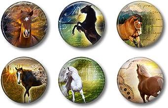 Cute Locker Magnets For Teens - Horse Magnets - School Supplies - Whiteboard Office or Fridge - Funny Magnet Gift Set (Hor...